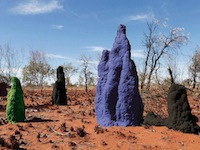 FINAL termite-mounds large_color_rgb2 share